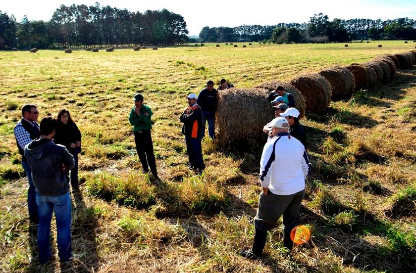 El municipio entrega ayuda a productores ganaderos