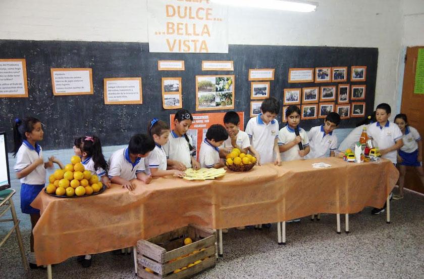 Feria de Ciencias: procesos productivos de la naranja