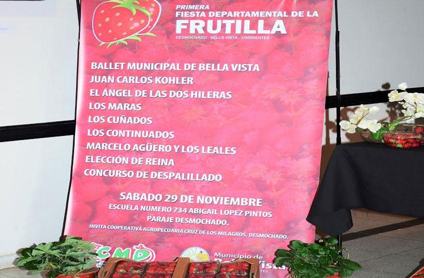 Programa de la 1º Fiesta Departamental de la Frutilla