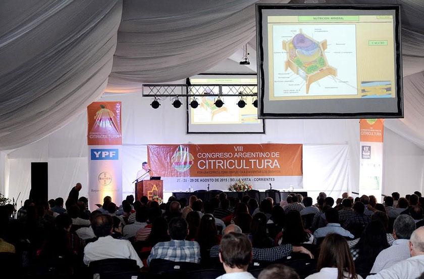 Comenzó el Congreso de Citricultura de Bella Vista