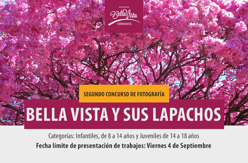 2º Concurso de fotografía: Bella Vista y sus Lapachos