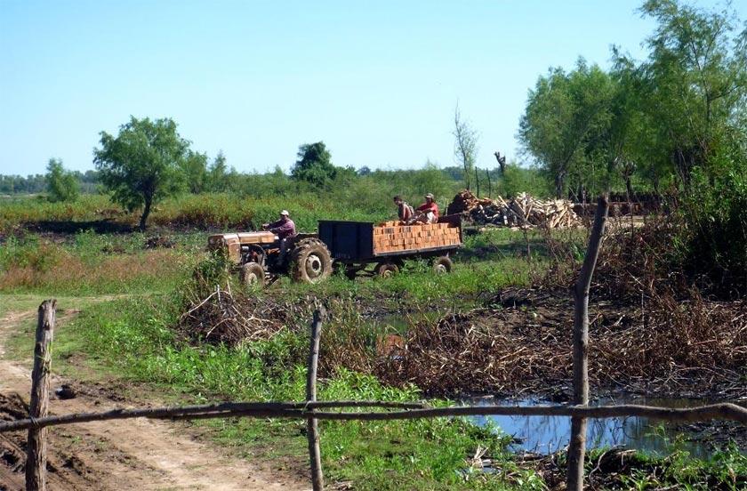 El municipio anunció operativos para zonas ladrilleras