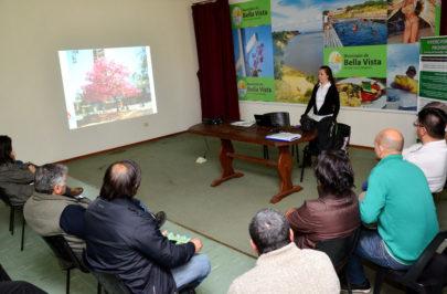 Bella Vista incluida en programa de arbolado urbano