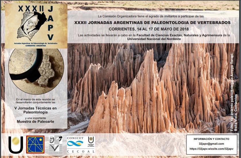 Hallan restos fósiles de 50.000 años en el Toropí