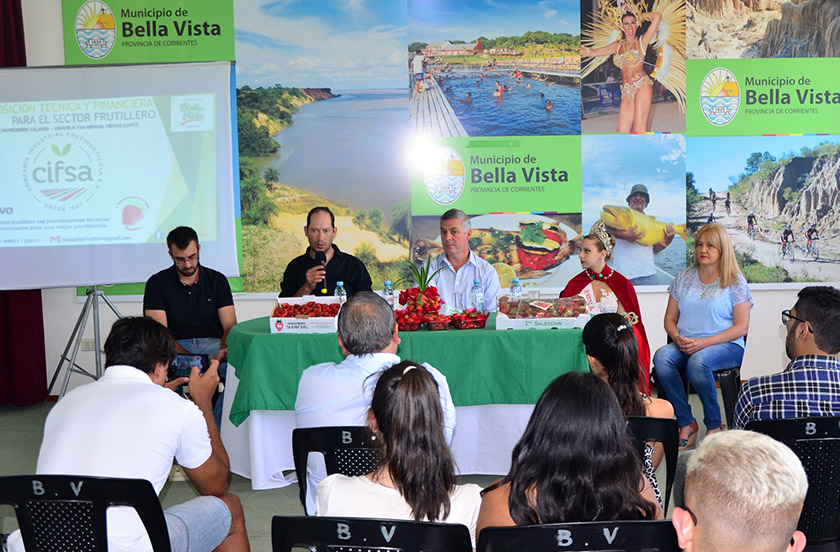 Anunciaron la Fiesta Departamental de la Frutilla 2018