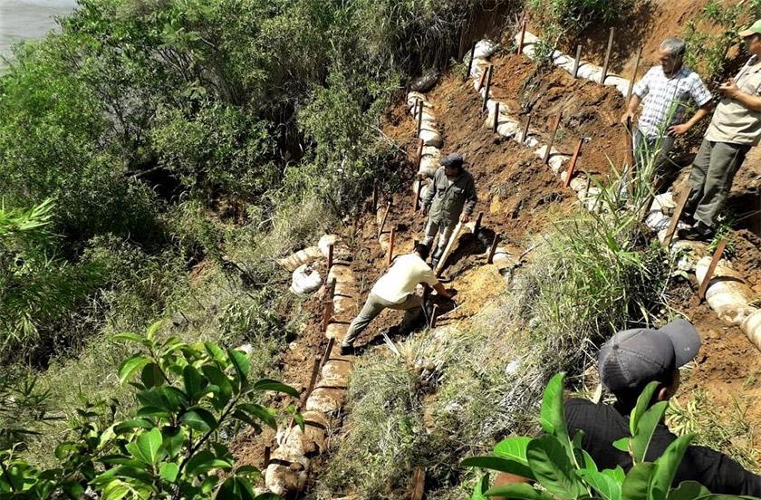 Implantan vegetales para contener la erosión del parque Cruz de los Milagros