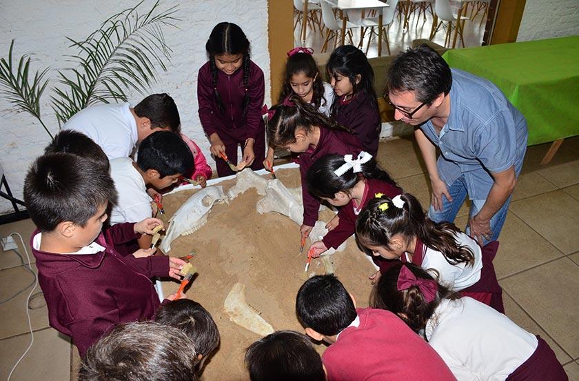 Comenzó el Encuentro Provincial de Paleontología
