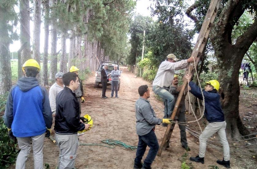 Instalan nuevas redes eléctricas en barrio 15 Viviendas